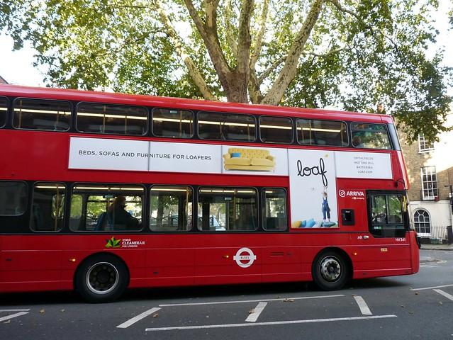 Bus & Tree