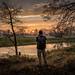 At work in Rogalin Landscape Park by Michał Banach
