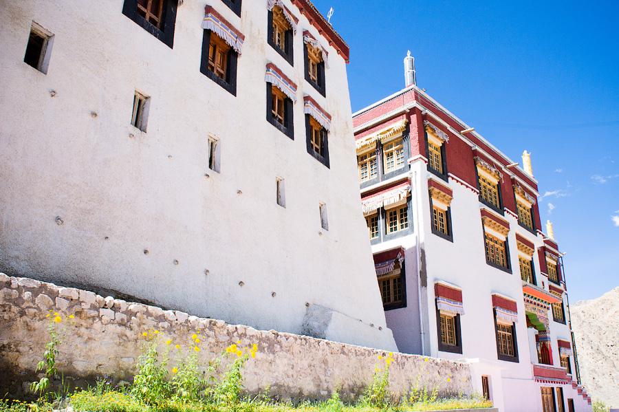 Пьянг гомпа, Ладакх - авторские туры в Гималаи, тревел фото