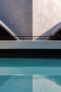 Lotus Temple VIII - Pool Reflection Detail