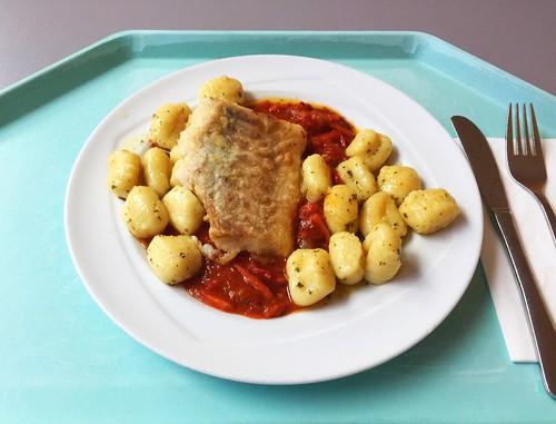 Codfish filet on tomato bell pepper ragout with herb gnocchi / Kabeljaufilet auf Tomaten-Paprika-Ragout mit Kräutergnocchi