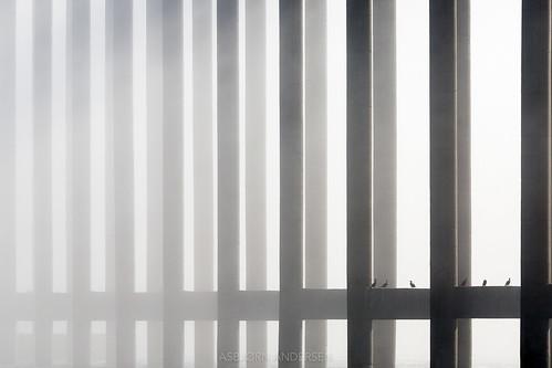 Construction in fog