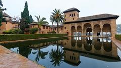 A wet morning in Alhambra - Torre de las Damas