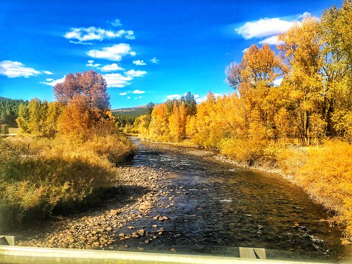 fallcolors fall autumn nature'sbeauty nature colorado 2018 roadtrip