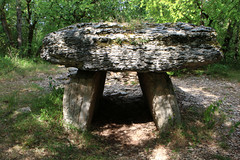 Dolmen du bois de Galtier - Photo of Saint-Jean-de-Laur