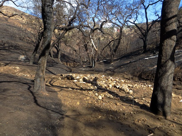 there are debris flows throughout Solstice Canyon