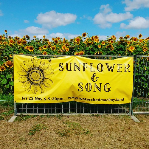 Sunflower and Song - banner at MRBG | by bilateral
