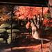平林寺の紅葉 by yoshi.i