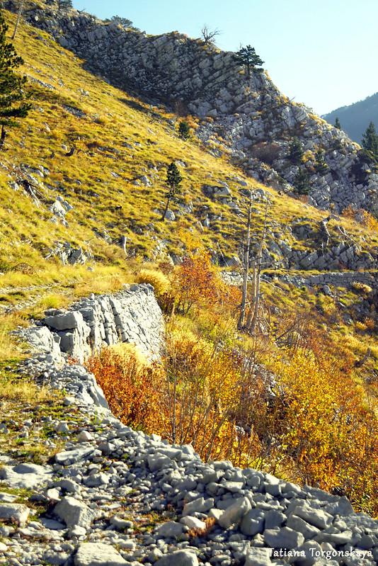 Поворот горной дороги, ведущей к Орьенскому седлу