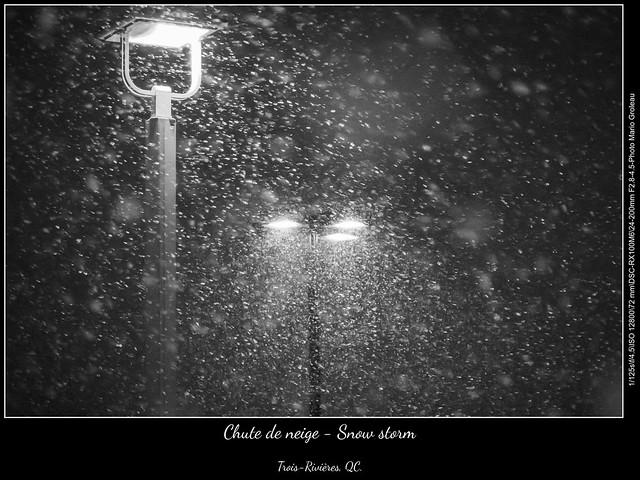 Chute de neige - Snow storm