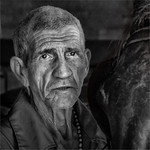 The Horse Trainer by Colin Mahoney