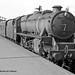 19/05/1964 - Derby.