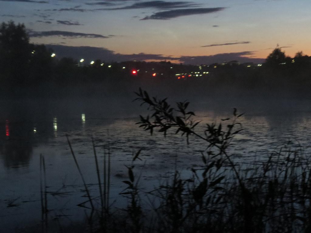Пруд в тумане