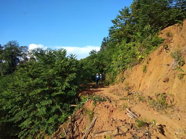 MMTF trail