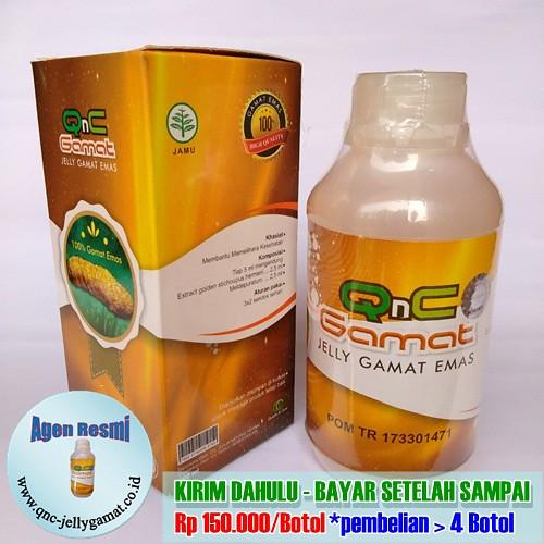 Stokis / Agen Resmi QnC Jelly Gamat Banyumas, Purwokerto, Cilongok dll