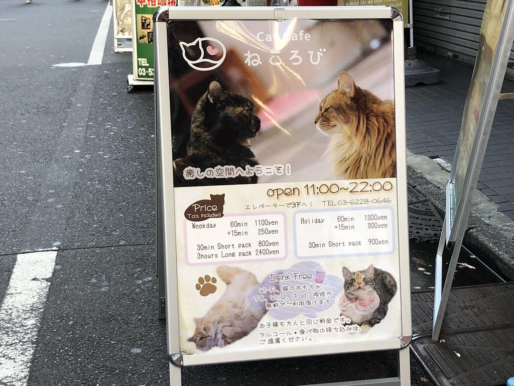 Anuncio de una de las numerosas cafeterías para pasar el rato acariciando gatitos