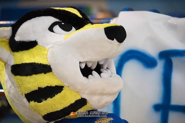 Ettore la tigre