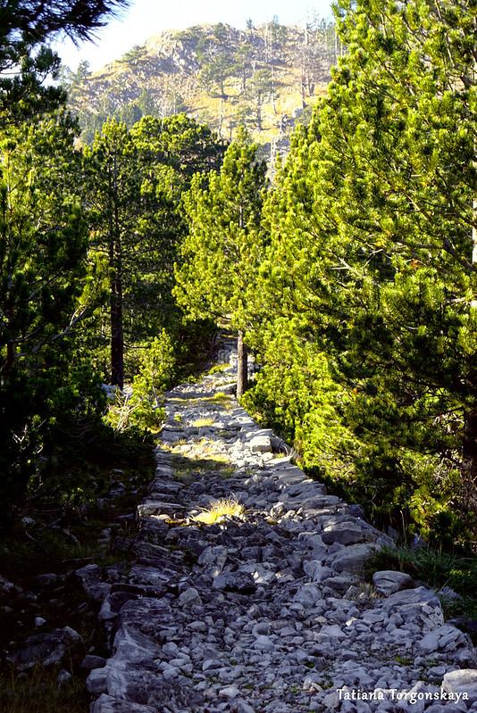 Старая дорога к Орьенскому седлу