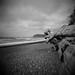 Medium Tide by jim peterson2012
