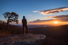 Shenandoah Sunrise Admiration