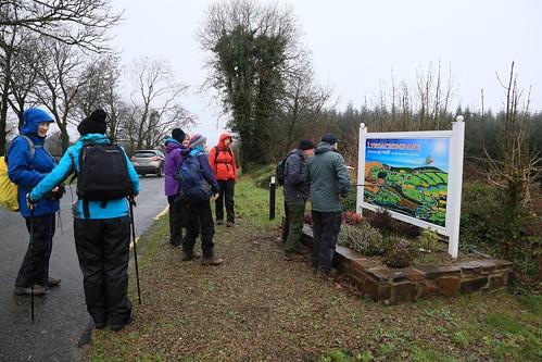 IMG_4521   Start of Lyrecrompane Forest Walk.  23rd December 2018.