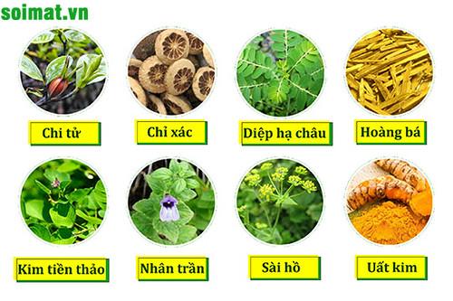 8 thảo dược quý - thành phần của sản phẩm Kim Đởm Khang