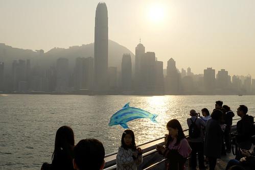 Hong Kong, Dolphin