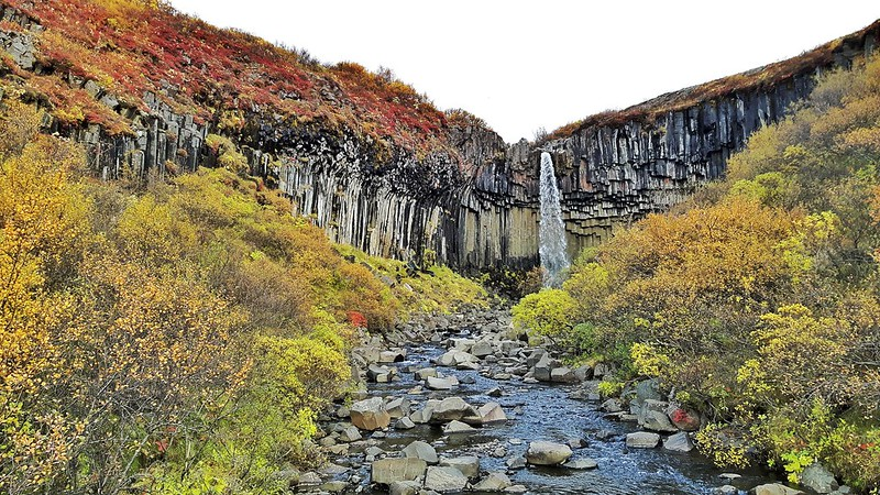 Basalt columns behind a waterfall with bright fall colours.