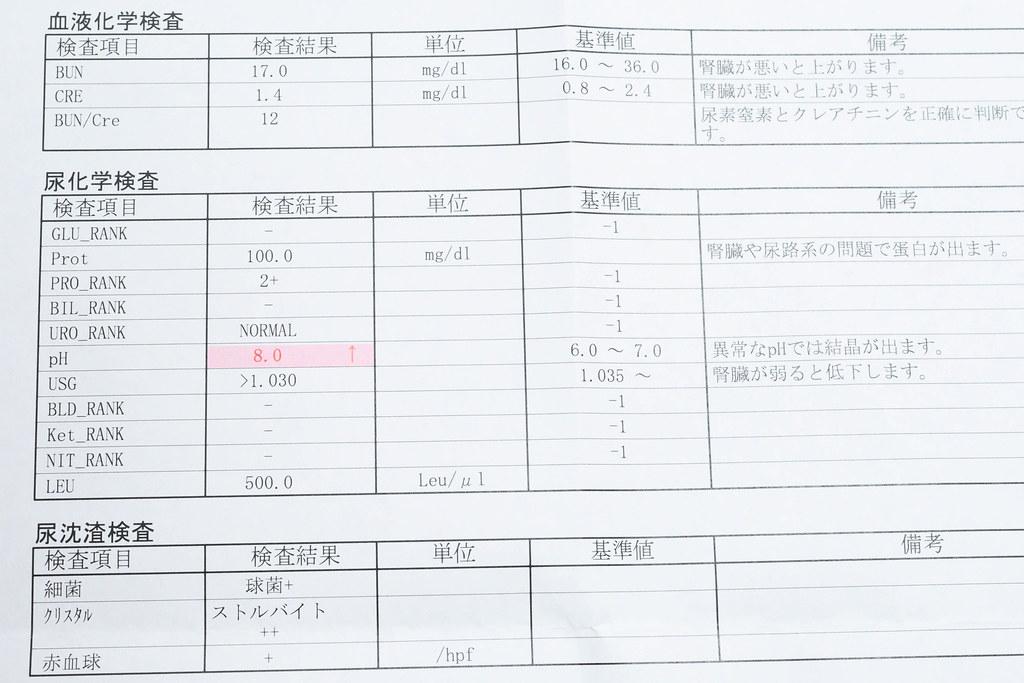 検査結果(1月2日)