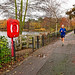 Lake Runners