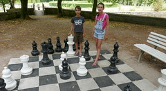 Checkmate - Photo of Vervant