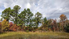 Azure Pond 6