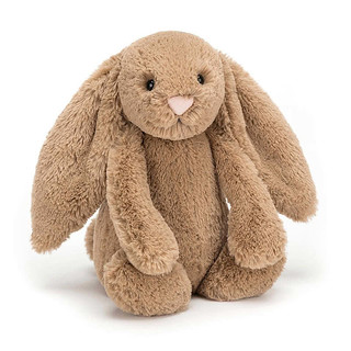 Jellycat-Bashful-Biscuit-Bunny-L