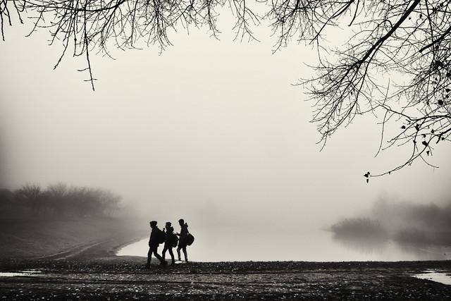 boys near lake in the fog