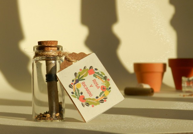 Mensaje en la botella con semillas