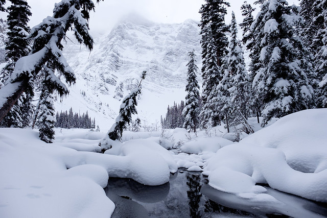Snowshoeing - Rawson Lake - Jan 2019-6