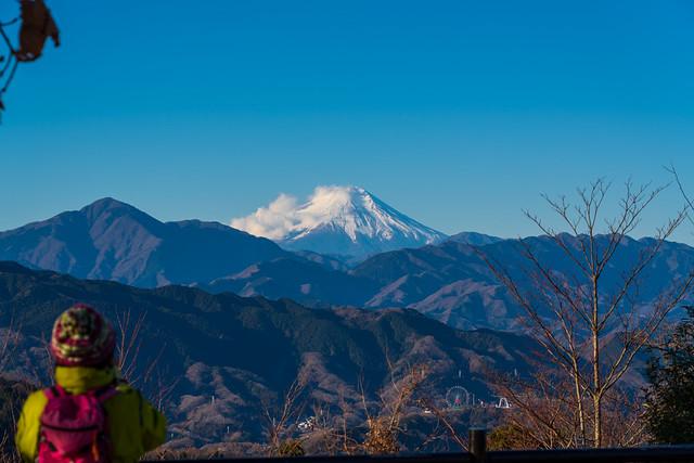 富士を臨む@高尾山