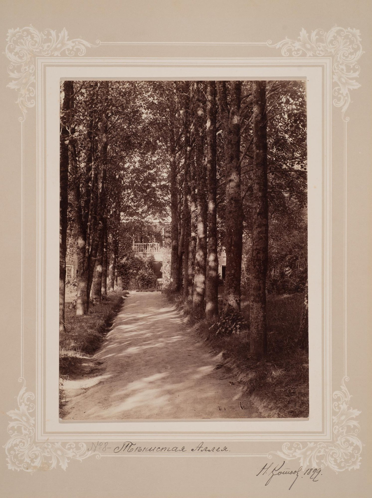 1899. Тенистая аллея