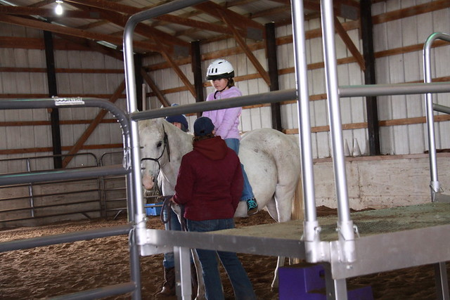 Horse Lessons (6)