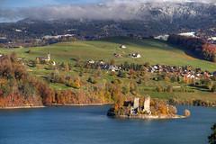 Gruyere Autumn