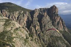 Monte Gozzi