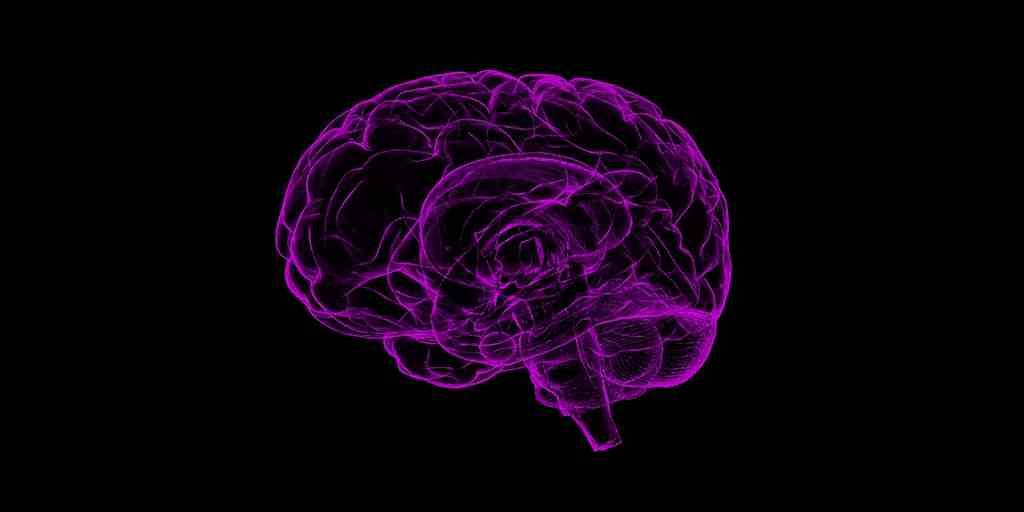 Le graphène : pour une meilleure interface cerveau-ordinateur