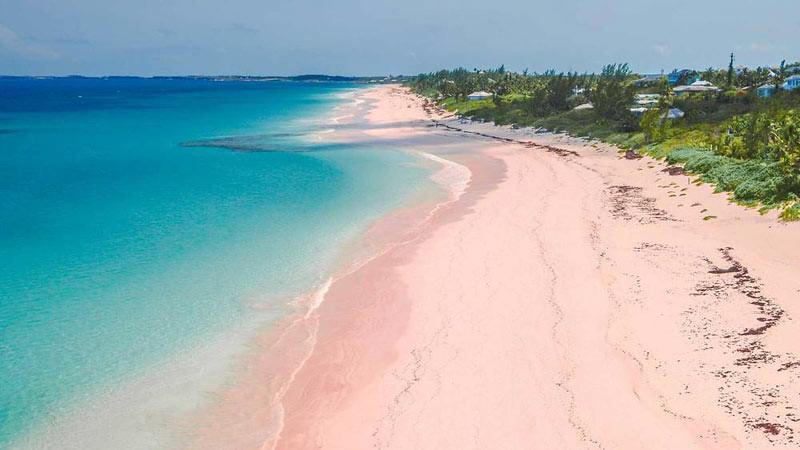Pink Sand, Bahama