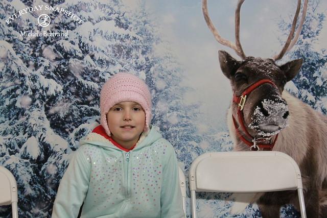 Reindeer 06