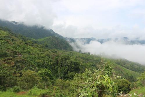Cusuco National Park buffer zone - Honduras