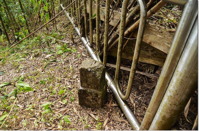 南頂坪林山冠字補山(07)山字森林三角點(Elev. 627 m) 2