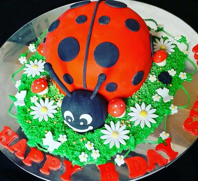 Lady Bug Cake by FN Cakes and Bakes