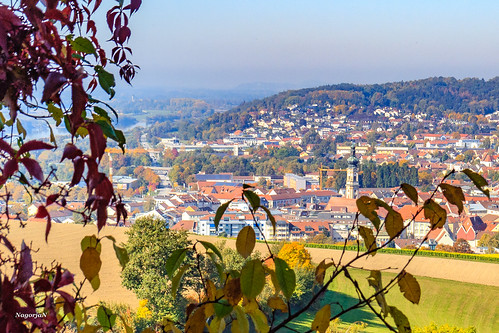 Herbst in Deggendorf  Bayern 2018