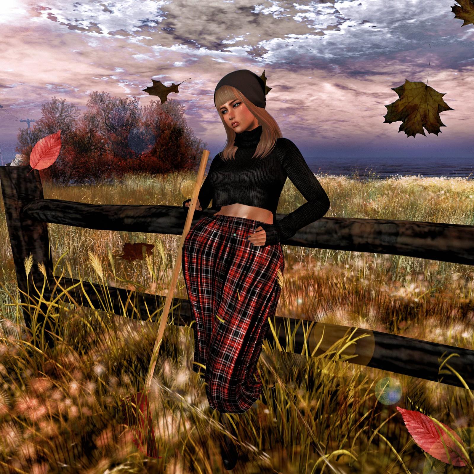 Airly Autumn