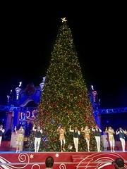 One big Christmas Tree at Winterfest
